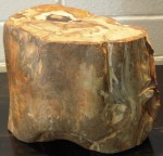 "CC813-27, Petrified Wood Riser, 10"" x 6""x 8 1/2"", Pricing & Availability Upon Request"